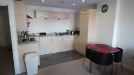 Large stylish 1 bedroom apartment in Newcastle city centre with secure parking.