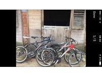 4x mountain bikes