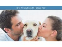 Do You LOVE animals? Become a Pet Sitter with Pawshake today! Free insurance incl. Kettering.