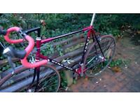 Raleigh Dyna-Tech 755 Ti Titanium (SPD) Road Bike 61cm EXCEPTIONAL BIKE !! OUTSTANDING CONDITION