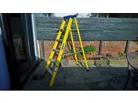 6 Tread Ladder, Clow Steps