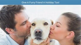 Pawshake are seeking Pet Sitters and Dog walkers! Sign up today! Free insurance incl. Newbury.
