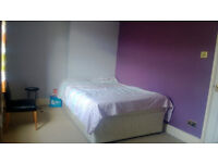 SA1: Single OR double room in a nice house near McDonald's on Fabian Way