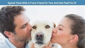 Pawshake are seeking Pet Sitters and Dog walkers! Sign up today! Free insurance included. Chathill.