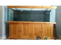 Fish Tank Cabinet Aquarium Large 6ft by 4ft