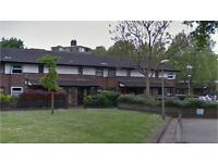 Bermondsey SE16. Light, Spacious & Modern 3 Bed Furnished House with Garden & Driveway on Quiet St