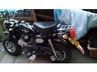 bike 125