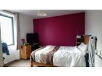 Spacious 2 Bedroom new build, own garden, parking. Central. GCH
