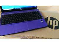 """WARRANTY fast 15.6"""" laptop HP Purple 8GB RAM 256GB SSD Windows 10 Microsoft Office"""