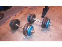 11KG YORK CAST IRON DUMBBELL WEIGHTS SET