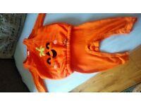 9-12 month pumpkin Halloween costume