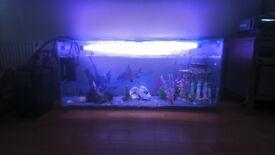 200L aquarium full setup