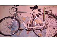 Giant Eco Electric bike