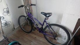 Ladies mountain bike. £30