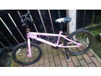 Free bike 🚲