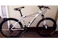"white 2016 Giant Atx Mountain bike ""NEW"" boxed 26""1.95 Medium Size Aluminum Alloy"