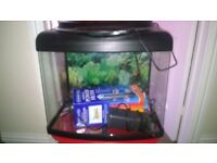 For Sale - Aquarium / smaller size fish tank / incubation tank. Power filter included. VG condition.