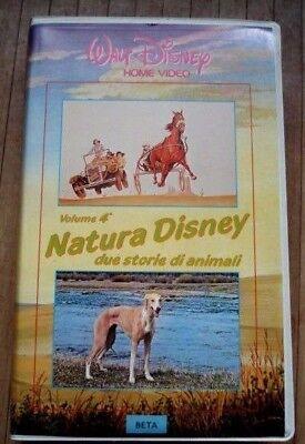 Beta Videocassetta Walt Disney Volume 4 Natura Disney Betamax Rara segunda mano  Embacar hacia Mexico