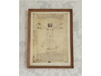 Leonardo da Vinci framed picture. Vitruvian Man✏️