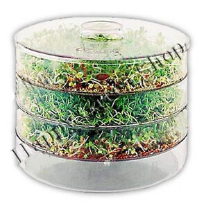 FREE UK POSTAGE- LARGE 3 TRAYS GERMINATOR SPROUTER +sprouting seeds 3 packets!