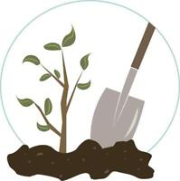 Small Tree Planting Contractor