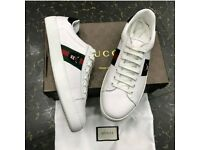 Gucci Tiger shoe