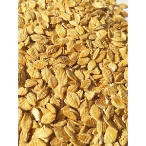 Flaked Barley - suit horse/sheep/goats/chooks York York Area Preview