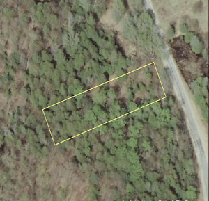 Half Acre forested building lot at a great price 2 hrs from T.O.