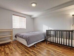 Beautiful condo for rent Gatineau Ottawa / Gatineau Area image 8