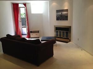 Spacious 3 1/2 Downtown Mcgill Furnished& Utilities included