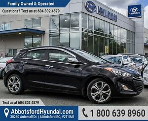 2013 Hyundai Elantra GT SE ONE OWNER & GREAT CONDITION
