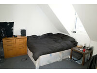 Double room available immediately in smart flat in North Hill, Plymouth
