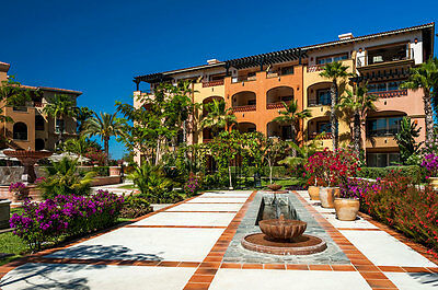 Used, 1BR HACIENDA DEL MAR CABO SAN LUCAS MEXICO MARCH 9 - 16, 2019 RENTAL for sale  Shipping to Canada