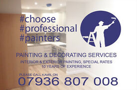 PROFESSIONAL PAINTERS WEST & CENTRAL LONDON