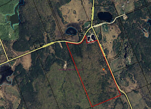 Vacant Land in Parry Sound