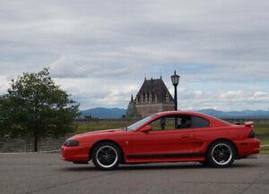 Mustang 95