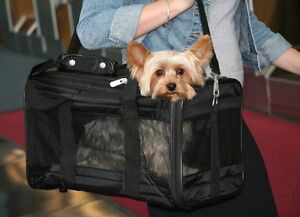 New Sherpa Deluxe Pet Carrier including cotton liner -New Price! St. John's Newfoundland image 1