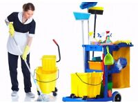 Experienced Domestic Cleaner/Housekeeper