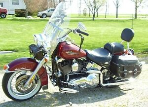 3 harleys for sale, softail, Dyna and Sporster