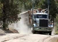 Logging truck driver needed