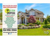 Gazon Tropical- Entretien de Pelouse