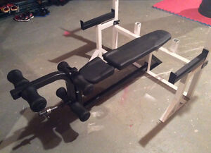 Northern Lights Bench Press with safety spotters & leg extension