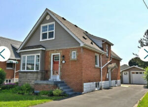 Newly Renovated 4 Bedroom 2 Bathroom House For Rent in Hamilton.
