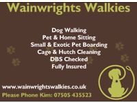 Dog Walking and Pet Services Your All Weather Dog Walker & More
