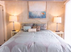 Gorgeous 2 Bedroom Queen and Dufferin Loft - Fully Furnished !