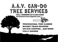ALL YOUR TREE CARE NEEDS