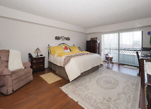 Central Location, Beautiful Home .... GREAT VALUE Kitchener / Waterloo Kitchener Area image 4