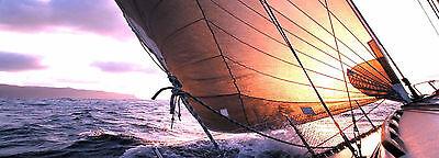 Sailingschoolandrigging 07894507812