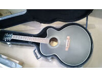 Swap my Freshman Electro Acoustic for Epiphone Dot or Similar....