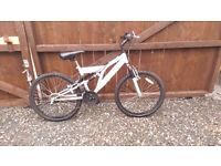 Vertigo rockface mountain bike